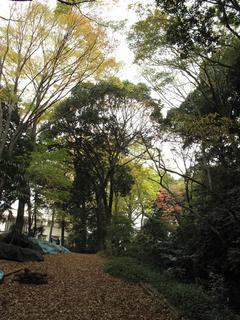滝野川学園.jpg