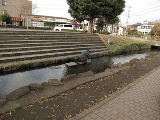 yagawa3.jpg