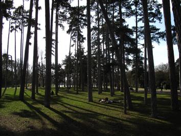 ブローニュの森.jpg