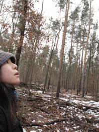 森で迷う.jpg