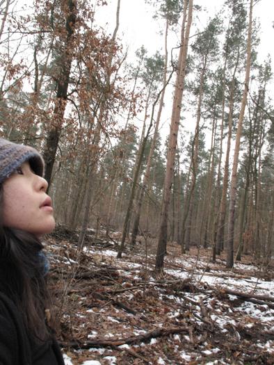 森で迷う1.jpg