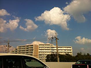 gudaguda_drive.jpg