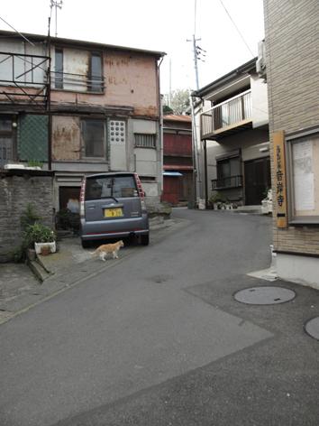 miura1.jpg