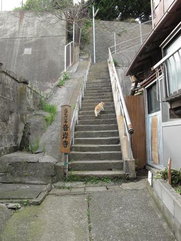 miura3.jpg