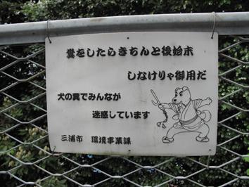 miura5.jpg